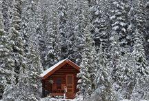 dream cabin . / by Andrew-Charlotte Alvarado