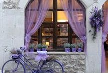 FAVORITE PLACES & SPACES / Beautiful places and scenarios. / by Whatsoever Things Are Lovely!