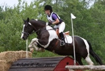 High Hopes Happenings / by High Hopes Therapeutic Riding