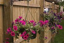 Outdoor Living & Gardening / by Chelsie Sorensen