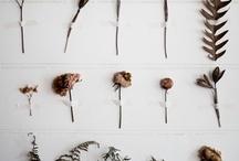 Make & Do / by Annaka Cowieson