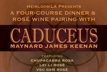 CADUCEUS DINNER / Inspiration Board for a Public Dinner to be held in The Salon on July 26, 2013 with Maynard James Keenen of Caduceus Wine which is made in Jerome, AZ