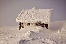 Winter Wonderland / by LYNNsteven Boutique