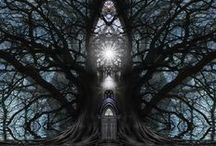 My Photos (Tree-Cathedrals) / ...every picture I see can turn into a door that invites me in to come home... ( photos taken by me from trees and then manipulated in Photoshop)