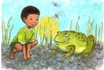 Ranas/Frogs / by La rana encantada