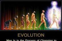 "Art on ""Illusion of Evolution"""