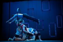Circus at Sadler's Wells and the Peacock Theatre / Sadler's Wells's theatres host some of the world's best contemporary circus companies. The Canadian troupe The 7 Fingers perform at the Peacock Theatre 16 September - 4 October 2014.