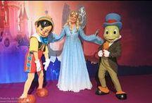 Paradisulcopilului / ARIEL Animator Disney Store