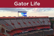Gator Life / Anything related to the Florida Gators, Gator clothing, game day, decorating and more.