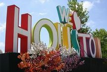 Houston & Surrounding Area / All things in the area - things to see, do, eat - your guide to Houston!
