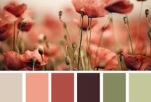 Colors & inspiration
