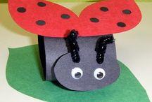 O.Ö-Hayvanlar-Uğur böceği
