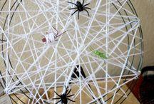 O.Ö-Hayvanlar -Örümcek