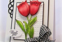 Cards...Florals / by Pamela Mead