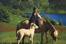 My Norwegian Heritage / by Carol