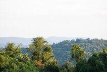 Scenes / Photos from around Antietam Overlook Farm