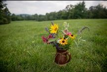 Flower Arrangements / Flower arrangements at Antietam Overlook Farm, using flowers grown on the farm.