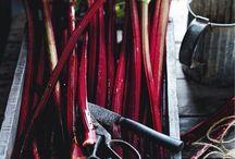 Recipes - Rhubarb