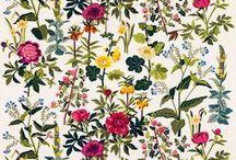 patterns inspiration