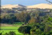 Golf Gran Canaria / Golf Courses in Gran Canaria