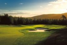 Fore! / Cape Breton is home to some of the greatest golf courses in North America! During your stay with us, be sure to set some time aside to enjoy the beautiful water-side golf courses! With views like these, every shot will feel like a hole-in-one!