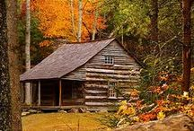 """Autumn at the Cabin / Here in upstate New York, Autumn is a short-lived but absolutely beautiful time of year and a time that we most want to spend at the cabin...think falling leaves crunching underfoot, hot cocoa around a campfire, warm afternoons and chilly evenings. Here are some of our favorite """"Autumn items"""" from CampFitters!"""