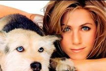 Celebrities with Pets / Animal advocates who are celebrities.