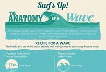 Surfing Infographics : Infographic Awesomeness / Can you? Would you?  It's great fun and a brilliant workout too!
