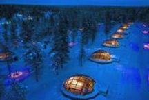Winter Travel Ideas / Travel to a Winter Wonderland