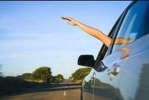 Roadside Attractions / America by the Roadside.
