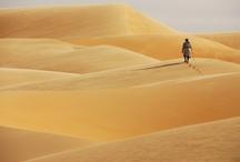 L'homme et la nature / Photographies gagnantes de la première édition du prix Photo par Nature organisé par National Geographic Channel et le Museum national d'Histoire Naturelle.
