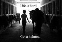 True Horse Quotes
