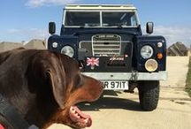 Winston / My Royal Navy Blue 1979 Series 3 Land Rover