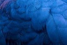 синий, голубой - оттенки