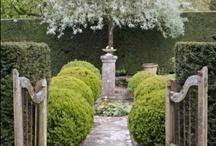 Gorgeous Gardens & Floral Arrangements