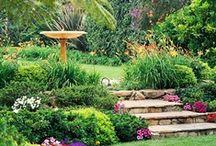 Home: gardens / by Sara