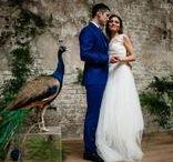 Wedding photo / Свадебные фотографии / Наиболее интересные свадебные идеи для вдохновения