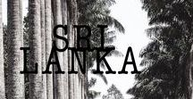 Sri Lanka / 15 jours de backpacking à travers les plus beaux paysages du Sri Lanka.