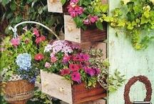 Garden Spaces / by Renee Buchanan