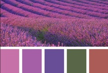 Inspire: Color Combos / by Kiki H.