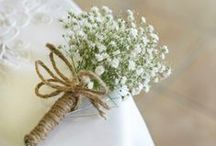 baby's breath / by le Frufrù