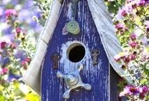 Houses & feeders for birds / by Jen Favor
