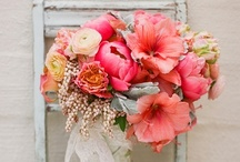 Crushin' on Coral : Wedding Color Inspiration  / View more tips & ideas on our Facebook Page : https://www.facebook.com/BoutiqueBridalParty