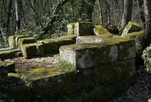 Santa Cecilia, il cimitero paleocristiano.