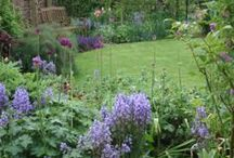 Cottage Gardens / Divine, inspirational and beautiful cottage gardens.