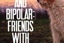 Two Polar Bears & other Circus Animals / Bipolar 2 Disorder