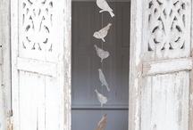 Doors `~ Windows