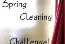 DIY Cleaning / Pin your Cleaning Tips, Tricks, And most importantly, your RESULTS!!! PLEASE, no pins about using VINEGAR to clean MARBLE or nudity!
