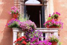 Portas,Janelas e Escadas