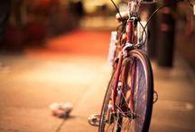 Bisiklet / Bike